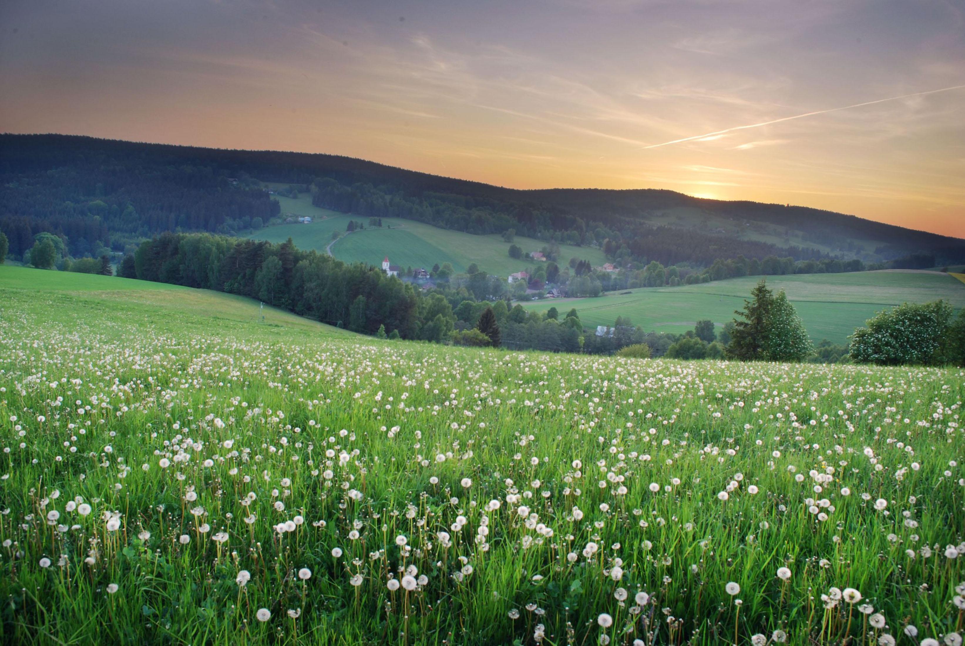 ceska-krajina-01-louka-hory_4866475